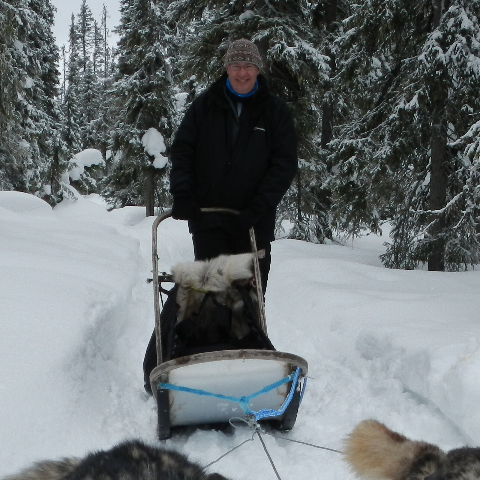 Dog Sled Commute